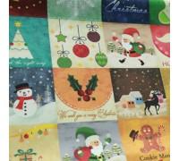 (2632) DTP Рождество YS1009