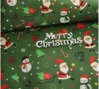 (2635) DTP Санта (зеленый) YS1012