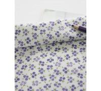 (2817) DTP  Фиолетовые ягоды